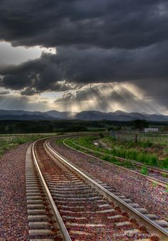 Colorado Sunbeams