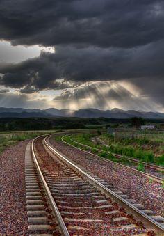 Colorado Sunbeams