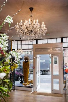 Alison Tod Boutique, Abergavenny, Wales New Builds, Chandelier, Ceiling Lights, Boutique, Luxury, Wales, Feathers, House, Couture