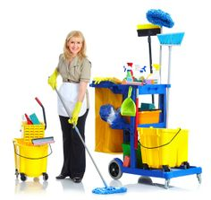 Choose the house cleaning services offered by our carpet cleaning company in Queen's Park and you will receive professional carpet and upholstery cleaning. Domestic Cleaning Services, Office Cleaning Services, Professional Cleaning Services, Professional Cleaners, Cleaning Business, Clean Hardwood Floors, Carpet Cleaning Company, Carpet Cleaners, Shopping