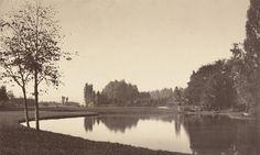 Charles Marville, 'Bois de Boulogne,' 1858, National Gallery of Art, Washington D.C.