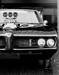 GTO Monstro!