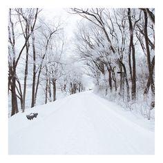 """""""White Hamburg ❄️ #hamburg #snow #white #winter #quite #scenery #potd #potd #walking #love"""""""