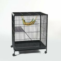 how to get rid of brocolli smell in rat cages