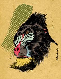 Mandril Colored by RodrigoDiazAravena.deviantart.com on @deviantART