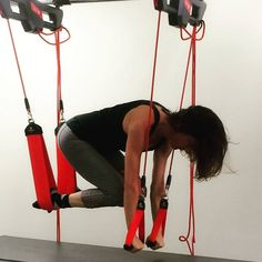 #redcord @slingbodyfitness Body Fitness, Trx, Body Weight, Training, Exercise, Coaching, Ejercicio, Fitness Workouts, Tone It Up