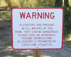 Alligator Park, Punta Gorda Florida (((  Umm molesting? Is this a real problem??  )))