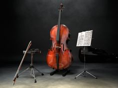 Cenas com violoncelo e várias outras imagens em 3d criadas em digitalmente. Vi na https://www.turbosquid.com/3d-models/scene-cello-3d-model/891378