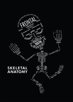 SKELETAL ANATOMY by Amy Kwan    An informational poster displaying the hierarchy and organizational relationships with typography. In this case, type serves as both image and information on the skeletal anatomy. <--Would be cute as a shirt