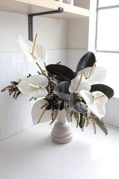 Anthuriums: Rethinking a Hotel Lobby Flower: Gardenista