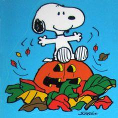 Yay for Fall! #Peanuts #CharlieBrown