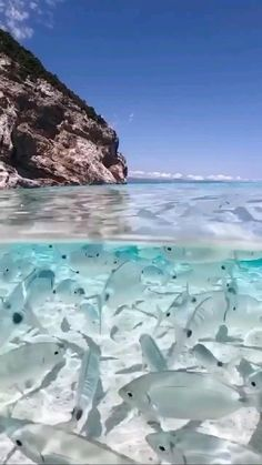 Fun Places To Go, Beautiful Places To Travel, Beautiful Beaches, Places To Visit, Beautiful Sea Creatures, Travel Destinations Beach, Image Nature, Beautiful Photos Of Nature, Destination Voyage