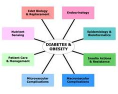 It's been officially proved that obesity is a disease. It puts us at high risk of diabetes which increased the risk of gum diseases. Know more about it and also find a dentist with the help of FreeDentistFinder. Beat Diabetes, Causes Of Diabetes, Thyroid Test, Workout At Work, Insulin Resistance, Diabetes Treatment, Diabetes Management, Blood Test