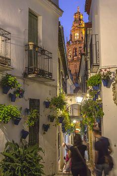 Judería de Córdoba: la más bonita de la ciudad