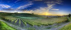 Sunset Over Chianti - (HDR Chiant, Italy) | da blame_the_monkey