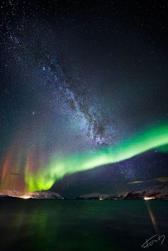 Northern lights, sea and milk by Kristian L. Forsberg