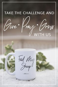 """In Invitation to """"GIVE‣ PRAY‣ GROW"""" with Living by Design Ministries by joining our Support Team and help us in our mission to deliver free online Bible studies to Christian women around the world. As a Support Team member, you can participate in one aspect of the challenge or all three. It's up to you. #womenbydesign #christian #nonprofit #challenge via @sarahelizkoontz"""