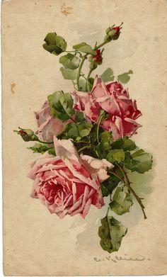 catharina klein paintings - Hledat Googlem