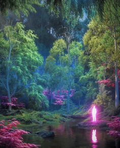 """📁 on Twitter: """"""""florescence"""" by josh pierce… """" Aesthetic Art, Aesthetic Pictures, Aura Colors, Psy Art, Hippie Art, Visionary Art, Retro Futurism, Psychedelic Art, Pretty Pictures"""
