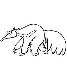 High Quality Free Anteater Coloring For Kids Sheet Page Picture