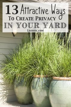 How to easily add privacy to a yard, deck or patio - great for urban dwellers or folks that live in older, squishy (houses close together) neighborhoods.