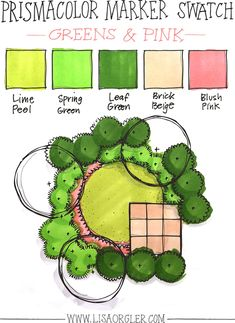 In the last few weeks I've received several questions about how to choose colors when rendering a landscape plan in marker. In response to your excellent inquiries I've shared my own guidelines and steps below, plus created three marker color combinations that I've seen my students use or I'