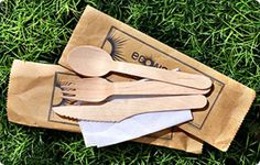 wooden compostable utensils... $9.95/100. They also have plates, bowls, and platters.