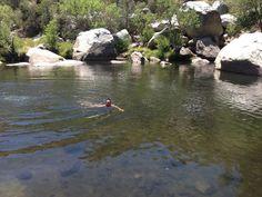 Fishing upstream of johnsondale bridge on the kern river for Kern river fishing spots