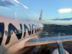 Finnair has a lot of flights to Finland. Arctic, Finland, Reindeer, Fairy Tales, Santa, Cold, Fairytail, Adventure Movies, Fairytale
