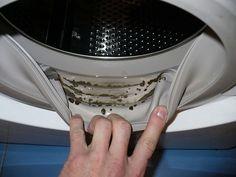 Ha nem figyelsz oda eléggé mosógépedre, akkor máris belephetik a makacs penészgombák! Ráadásul olyan helyeken, amit amúgy nagyon nehéz takarítani. De van egy szuper megoldás rá, most megmutatjuk!
