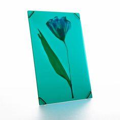 Voeg wat kleur toe aan je leven en frame je mooiste blad, bloem of paper art met de Hueframe. De Hueframe is een lijst zonder lijst en is een opvallende verschijning dankzij zijn kleuren en semi-transparante karakter.