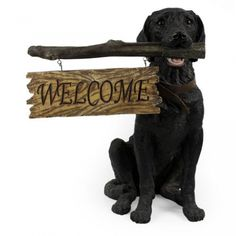 Nice Black Lab Welcome StatueFor $98.99