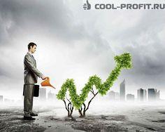 Инвестиционный пай представляет собой ценную бумагу, которая дает право на владение частью активов фонда.