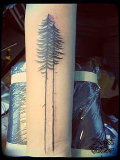 spruce tree tattoo