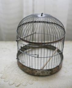 bird cage http://www.etsy.com/shop/sadieolive
