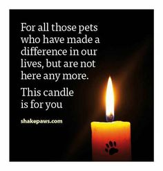 Roxie this is for you! Momma loves you and you're alive still in my heart