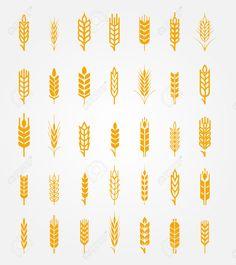 ear of wheat png - Поиск в Google