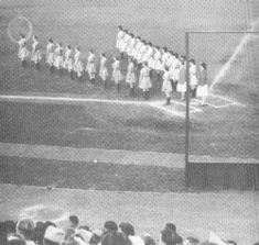 Baseball Girls Lined Up At Home Plate