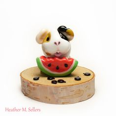 Watermelon Seed Spitting Contest No.2 by Heather Sellers.  Featuring a guinea…