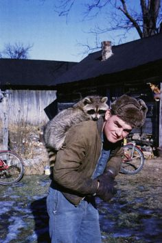 Essay on the pocket knife:  Picture of a raccoon on a man's back.