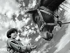 #A_child_and_a_horse