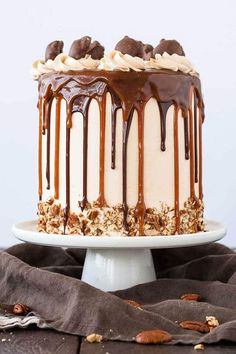 Transform your favorite candy into this Turtles Layer Cake! Layers of rich chocolate cake, caramel buttercream, caramel sauce, and chopped pecans: Cake Recipes Salted Caramel Chocolate Cake, Nutella Cake, Hot Chocolate Cookies, Chocolate Ganache, Oreo Cake, White Chocolate, Delicious Chocolate, Easy Christmas Cookie Recipes, Easy Cookie Recipes