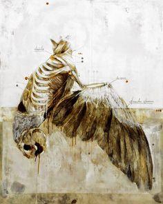 Beautiful-Anatomical-artworks-by-Nunzio-Paci