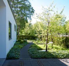 Summer House Garden, Home And Garden, Rest Of The World, Front Entry, Garden Paths, Garden Inspiration, Entrance, Outdoor Living, Garden Design