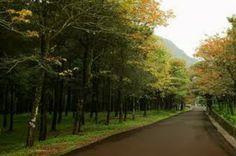 Những điểm du lịch sinh thái gần Hà Nội : Những địa điểm du lịch thú vị gần Hà Nội vào ngày ...
