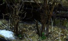 Dioramas and Vignettes: The Hunteress. Spring 1945, photo #24