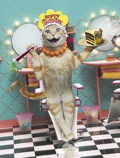 Happy Birthday Cat Pictures  04
