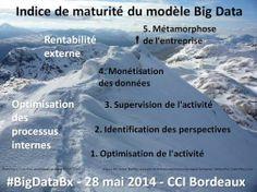 Indice de maturité du modèle big data