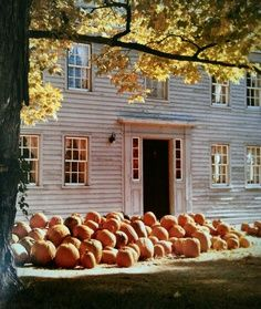 *TheWindyLilac.com-Sharing All Things Home-Autumn-AutumnDecorating, Autumn Decor, Autumn Porches and Patios, Autumn Outdoors.  All Things Autumn!-Pumpkins!