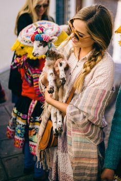 Gal Meets Glam Cusco, Peru baby Alpaca